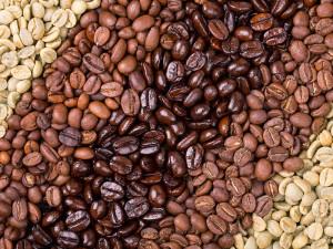 proceso-del-cafe